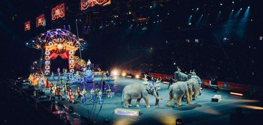 An evening at the Cirque d'Hiver
