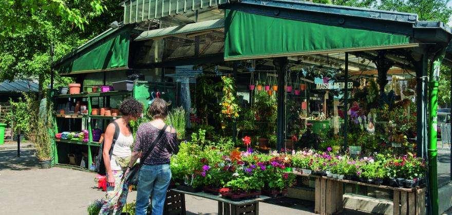 Découvrez le pittoresque marché aux fleurs de l'île de la Cité